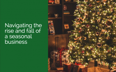 Navigating the rise and fall of a seasonal business